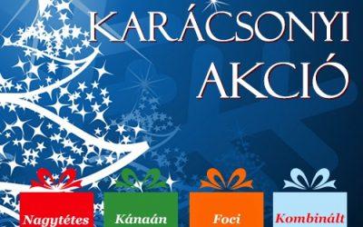 Ünnepi ajánlatunk + Karácsonyi akció!